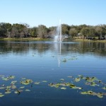 Lake Lily Park location for Happy 130th Birthday Maitland