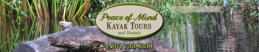 Central Florida Kayak Tours!