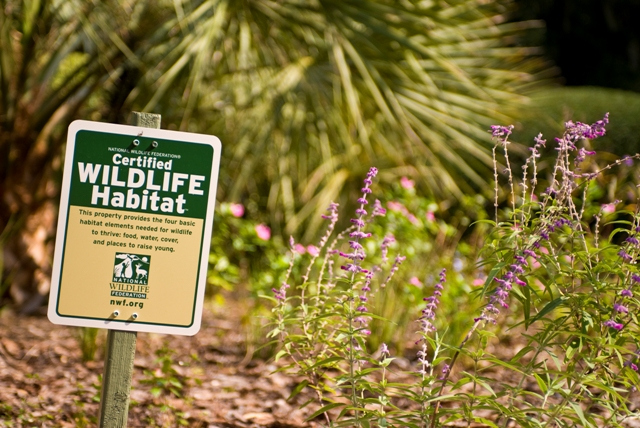 Become a Certified Wildlife Habitat Like Thurston House ...