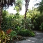 Walking Path at Leu Gardens