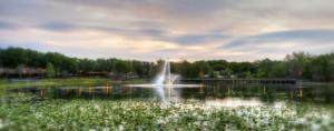 Maitland Pond