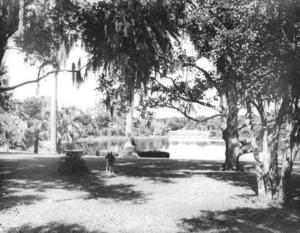 Historical photo of area